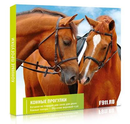 Подарок - Прокат лошадей для двоих