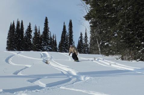 Зимой на сноускейте