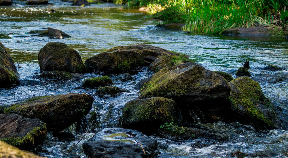 Река Северка Соколиный камень